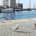 Hansestadt Wismar Hafen.jpg