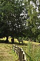 Hartrigge Stables and Walled garden, all that is left of Hartrigge estate 10.jpg
