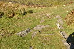 Haytor Granite Tramway near Haytor (8694).jpg