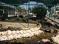 Hayvanat Bahçesi... - panoramio.jpg