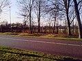 Heiloo - panoramio - Heiloo (24).jpg