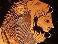 Herakles Lion Skull.jpg