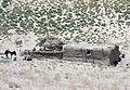Herat farm.jpg