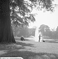 Herfsttij in Amsterdams Vondelpark, Bestanddeelnr 918-2135.jpg