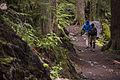 Hikers (14413666207).jpg