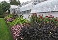 Hillwood Gardens in July (19614002468).jpg