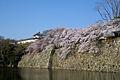 Himeji castle April 03.jpg