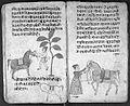 Hindi Manuscript 191, fols 56 verso 57 recto Wellcome L0024249.jpg