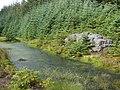 Hindleysteel Crags - geograph.org.uk - 543072.jpg