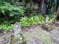 Hio, Toyama, Toyama Prefecture 930-1283, Japan - panoramio (12).jpg