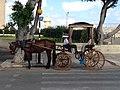 Horse-drawn vehicle in 2020.01.jpg