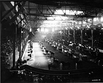 Coca-Cola Coliseum - Horses are judged at the Coliseum in 1940. The building hosted a number of equestrian events since its completion.