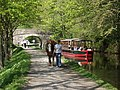 Horse drawn barge at Llangollen - geograph.org.uk - 167349.jpg