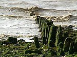 File:Humber Foreshore Posts - geograph.org.uk - 702332.jpg