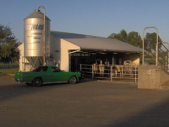 Agricultural education - Hurlstone Agricultural High School in Australia maintains a dairy with 42 head of cattle.