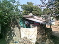 Hut in Kusumbe village.jpg