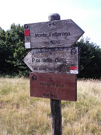 IMG 0038 Vetta Monte Falco.JPG