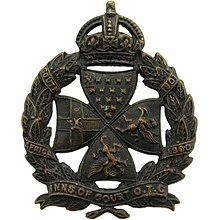 IOC OTC cap badge.jpg