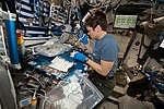 ISS-58 Anne McClain works inside the Harmony module (1).jpg