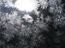 Ice crystals on glass.jpg