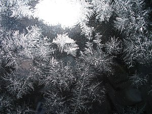 Ice crystals on glass.jpg