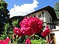 Ile aux Roses 010.jpg