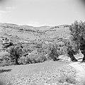 In het landschap van Gilead, Bestanddeelnr 255-5686.jpg