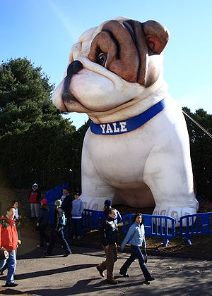 Handsome Dan - An inflatable Handsome Dan bulldog, on display during the 2007 Harvard-Yale game