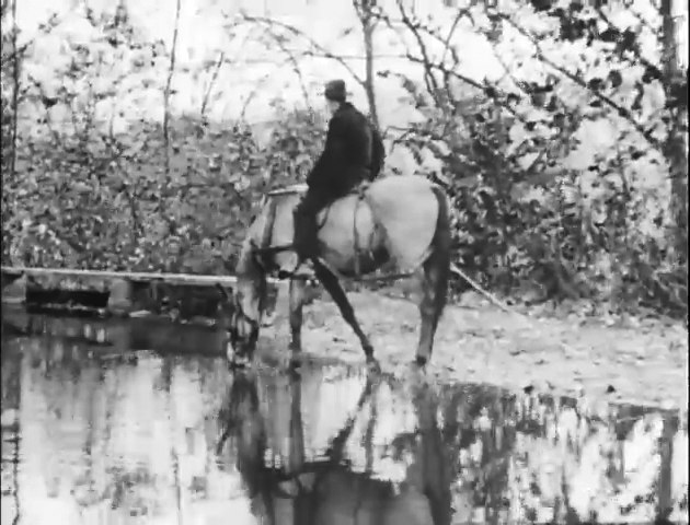Informal Overflow or Mule Drink on Chesapeake and Ohio Canal