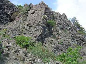 Lithology - A basalt, showing the 'pillow' lava shape characteristic of underwater eruptions, Italy