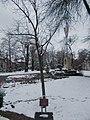 József Antall Sr. memorial tree and Country flag memorial, 2018 Pestújhely.jpg
