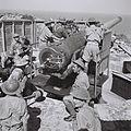 JEWISH SOLDIERS IN THE BRITISH ARMY TRAINING NEAR HAIFA. חיילים יהודים בצבא הבריטי במהלך אימון ארטילריה ליד חיפה.D817-011.jpg