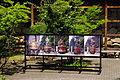 JP-takayama-festival-floats.jpg
