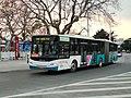 JW-BS-1138 at Zhongshan Park.jpg
