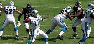Jake Delhomme - Delhomme prepares to pass in a game against the Chicago Bears on September 14, 2008.