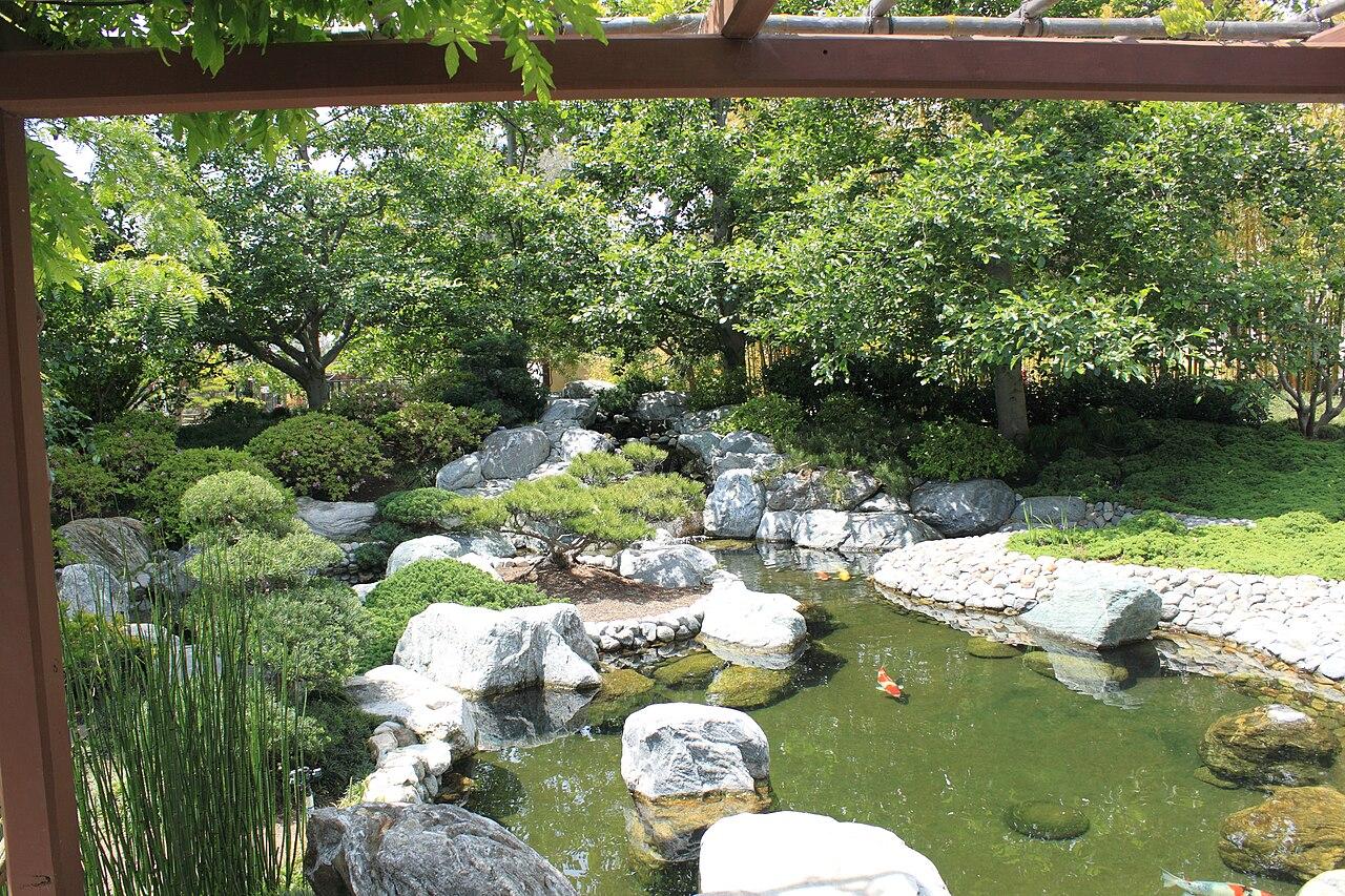 File japanese friendship garden path koi pond 5 jpg for Japanese friendship garden san jose koi fish