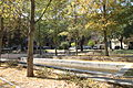 Jardim da Praceta Afrânio Peixoto 8940.jpg