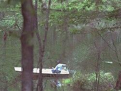 Jimmy Carter in boat chasing away swimming rabbit, Plains, Georgia - 19790420.jpg