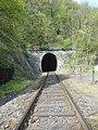 Křivoklát, železniční tunel (01).jpg