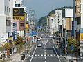 Kagoshima Pref Road 60 Kokubu Central.JPG