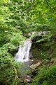 Kalktuff-Wasserfall Grosse-Lauter Schwaebische-Alb.jpg