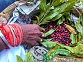 Kaphal (काफल) Myrica esculenta, fruit being sold near Almora.jpeg