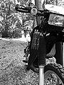 Kawasaki Kmx 125 Baujahr 2003.jpg