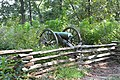 Kennesaw Mountain National Battlefield Park, Cobb County, GA, US (23).jpg