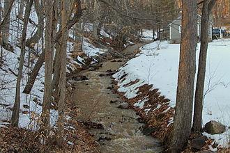Kinney Run - Kinney Run near its headwaters, looking upstream (March 2015)