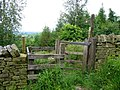 Kissing Gate - geograph.org.uk - 506084.jpg