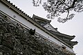 Kochi castle - 高知城 - panoramio (41).jpg