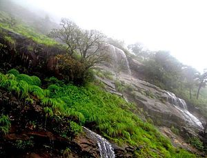 Charmadi - Waterfall in Kodekallu Gudda of the Charmadi ghat