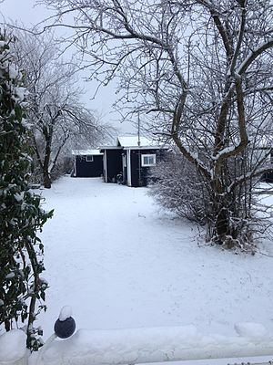Allotment (gardening) - Kolonihave in winter, Skovlunde, Denmark