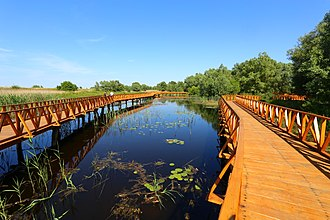 Wooden trail through nature park Kopacki Rit in Osijek-Baranja County Kopacki rit wooden trail.JPG